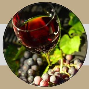 """Wine & Dine """"autour de la Chasse"""""""